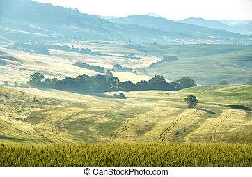 Early morning in Tuscany, Italy
