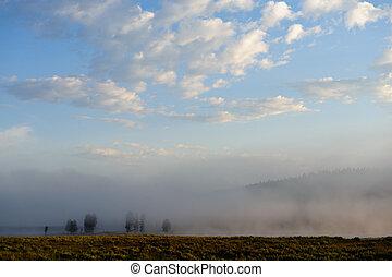 Early Morning in Yellowstone