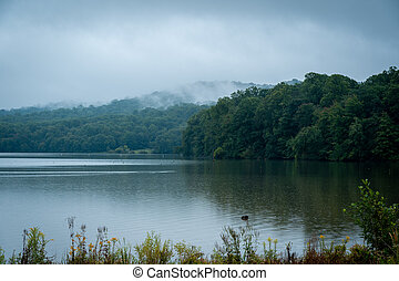Early Morning Mist over Lake