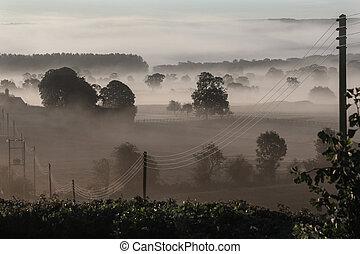 Early morning mist - United Kingdom