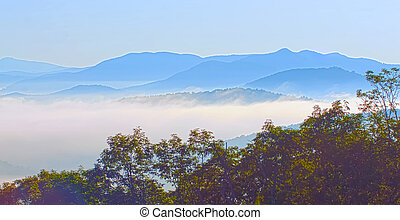 early morning on blue ridge parkway