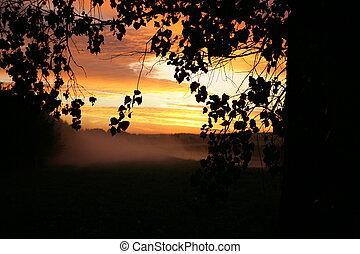early morning. sunrise