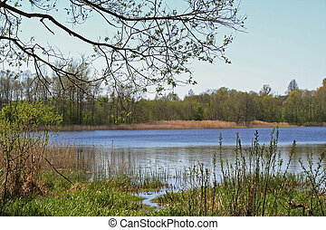 Early spring at the lake