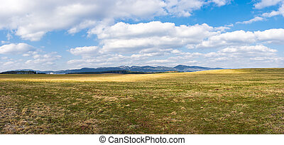Early spring panorama with pasture and hills