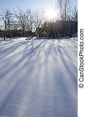 Early winter morning in the countryside. A ray of sun in the snow. Morning in the village. Shadows from the trees spread across the snow crust.