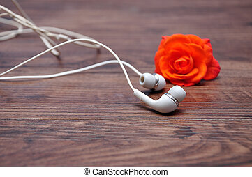 Earphones with an out of focus orange rose
