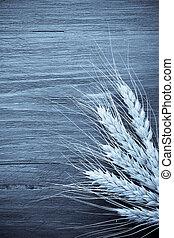 ears of barley on wood