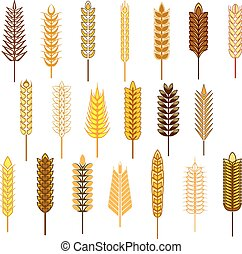 Ears of cereals and grains icons set depicting wheat, rye,...