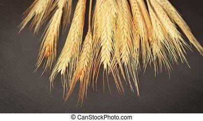 ears of grain on a black stone table