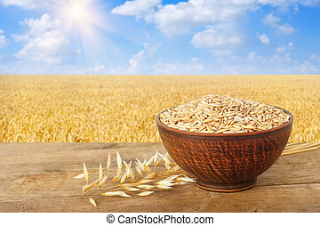 ears of oats and oat grains in bowl