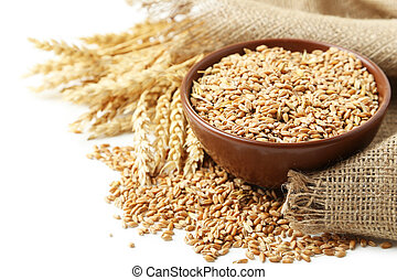 Ears of wheat and bowl of wheat grains on white background