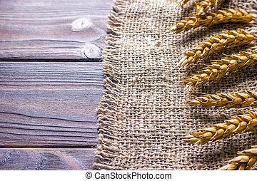 ears of wheat on black background texture, wheat on Burlap