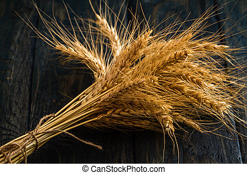 Ears of Wheat on Blue Background