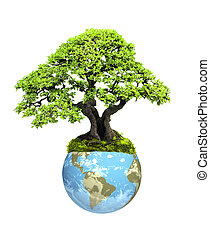 Earth and tree