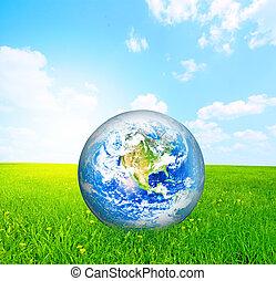 Earth globe on green grass