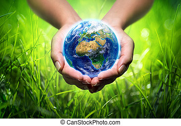 earth in hands - grass background - environment concept -...