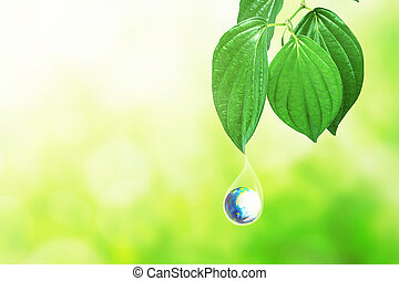 Earth in water drop under the green leaf