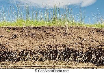 Earth soil cross section