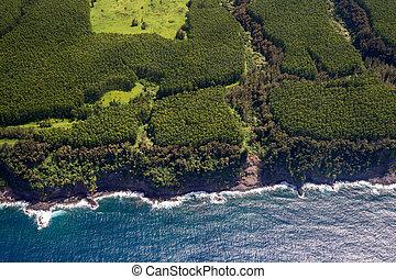 East Coast of Big Island
