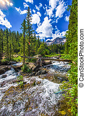 East Fork Dallas Creek Mt. Sneffels Wilderness area near ...