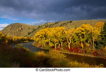 East river in Colorado in autumn time