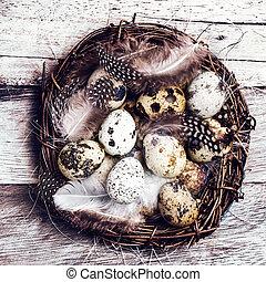 easte, バスケット, 卵, 木製である, ウズラ, イースター, バックグラウンド。