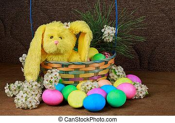 easter αβγό , επάνω , ένα , ακμάζω αγχόνη , παράρτημα