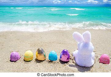 easter κουνελάκι , με , χρώμα , αυγά , επάνω , ο , οκεανόs , παραλία