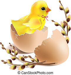 Easter baby chick hatched. Contains transparent objects. EPS10