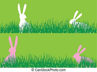 easter bunnies in grass, vector