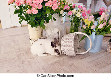 Easter bunny and decoration