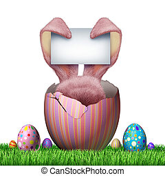 Easter Bunny Blank Sign