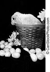 Easter Bunny b&w