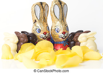 Easter bunny chocolate parade