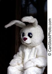 Easter Bunny Costume - The easter bunny!