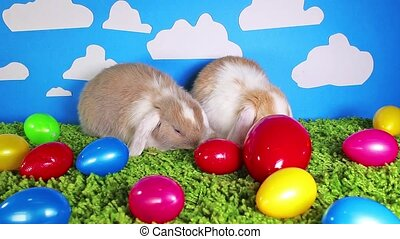 Easter bunny cute rabbit with eggs. Egg rabbits colorful background.