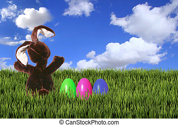 Easter Bunny in the Green Grass