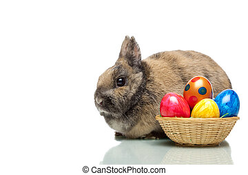 Easter bunny near a basket full of colorful Easter eggs