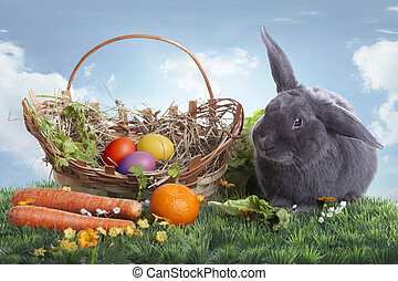Easter bunny on a beautiful spring