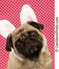 Easter Bunny Pug