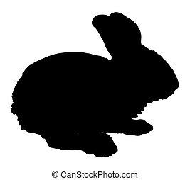 Easter Bunny Shape