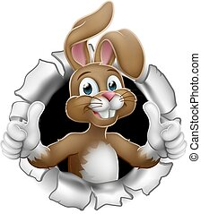 Easter Bunny Thumbs Up Rabbit Breaking Background