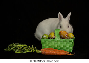 Easter bunny with basket of eggs and carrots on black...