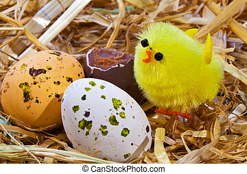 Easter chick and eggs in a nest