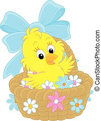 Easter Chick - Little yellow chicken sitting in a basket...