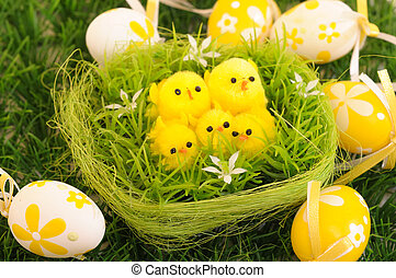 easter chick - painted Easter eggs isolated for easter design