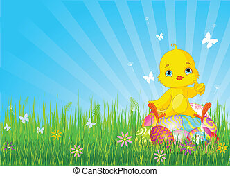 Easter Chick sitting on eggs