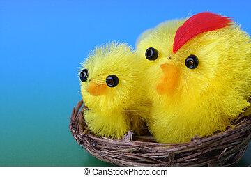 Easter chicks on blue background