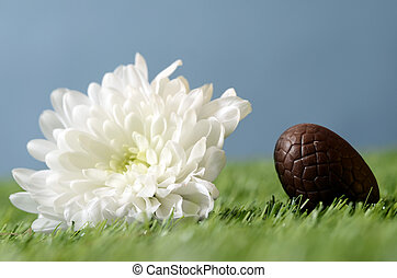 Easter chocolate eggs and gardening scene with white flower...