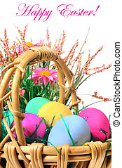 Easter colored eggs in the basket on the white background